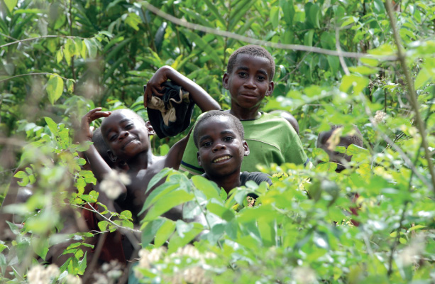Community Forests in CAR