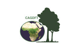 CAGDFT