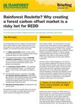 Rainforest Roulette? Why creating a forest carbon offset market is a risky bet for REDD