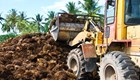 Congo Basin NGOs call for urgent action on palm oil expansion