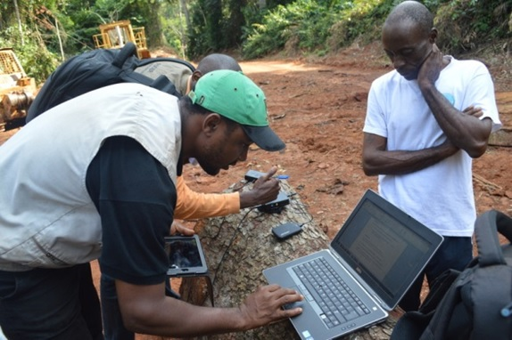 RFUK launches Real-Time Forest Monitoring in Cameroon