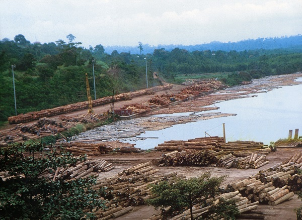 VIDEO: Extractive industries inside protected areas: A double blow for forest communities
